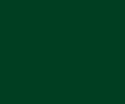 Trinat Decor Dark Green